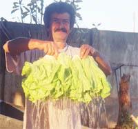 Sr. José e plantador de hortaliças.