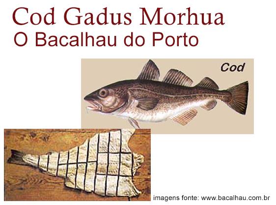 Os Bacalhau